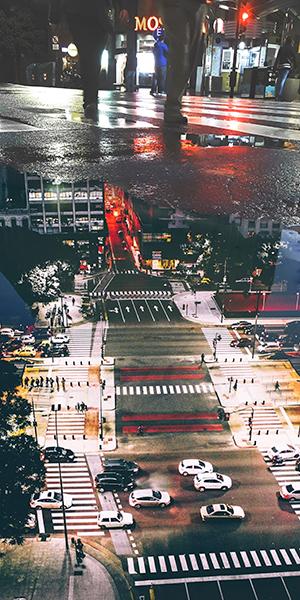FREDERIK FERNOW | REFLEXIONES EN CHARCOS I